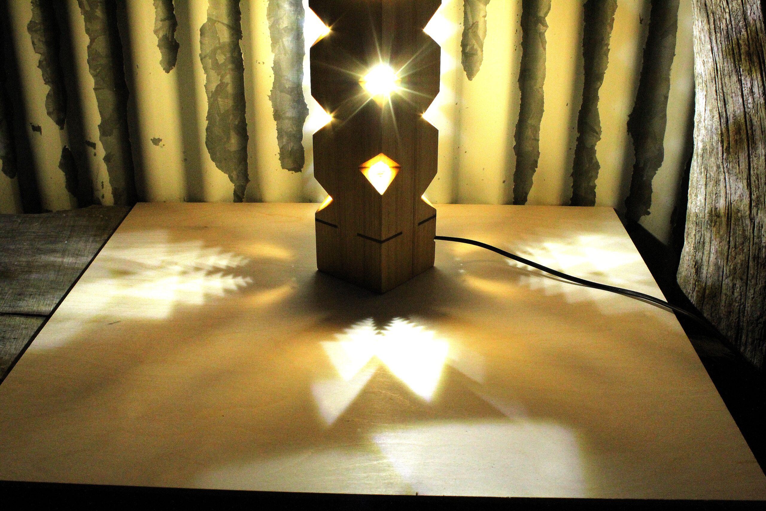 Lampade cactus - lampade di legno